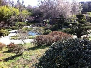 Hakone Gardens,  2013